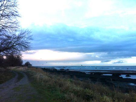 Photo 2012-12-30 14 38 27