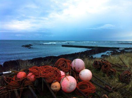 Photo 2012-12-30 14 42 04